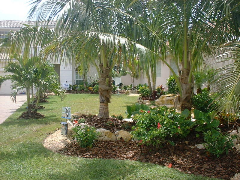 front yard landscape for a xero lot line yard & new garden area