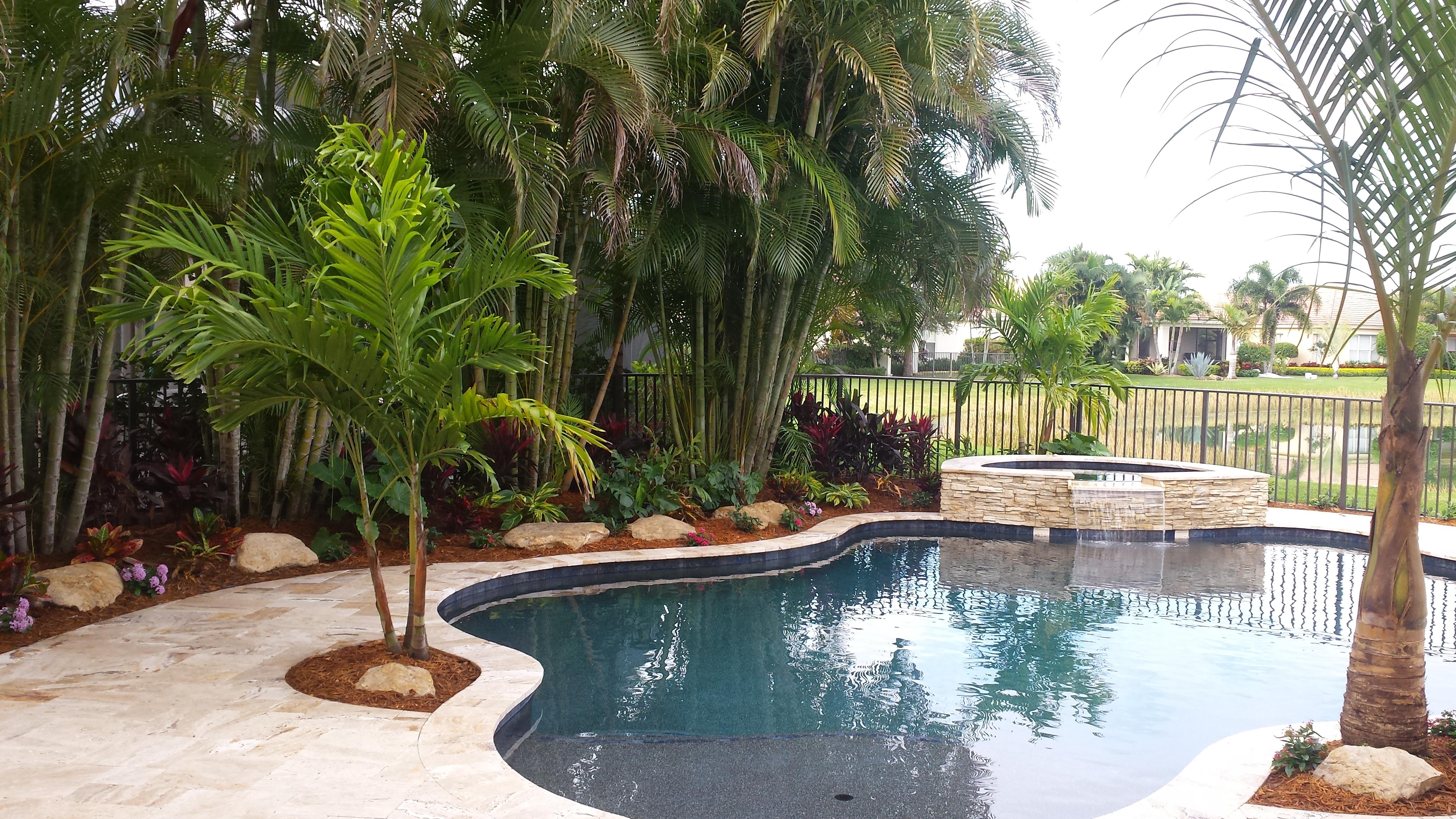 New Swimming Pool Amp Landscape Palm Beach Gardens