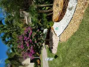 Front Yard Landscape Elevations & Stone Work