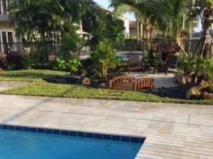 Swimming Pool & Asian Garden