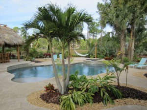 Tropical Pool Landscape & Resort Style Setting