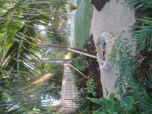 Tropical Landscape & Fire Pit