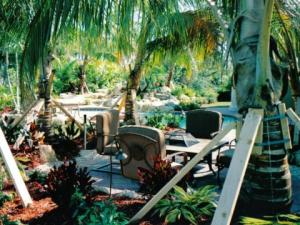 Hammock and palm seating