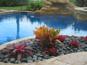 Pool Bed Landscape With Mexican Beach Pebble & Bromeliad Plants